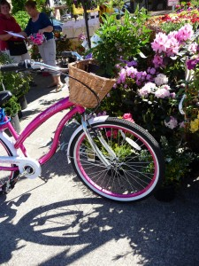 U & D nursery pink bicycle 5-4-13 8709657610_3c0d8c63f3_b